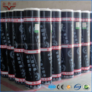 Self-Adhesive Sbs Modified Bituminous Waterproofing Membrane for Concrete Roof pictures & photos