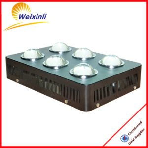 2017 Factory Best Selling COB Plant LED Grow Light for Medical Plants pictures & photos