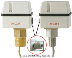 Water Pressure Flow Measurement Paddle Switch (HTW-AFS) pictures & photos
