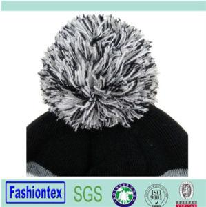 Fashion Winter Beanie Hat pictures & photos