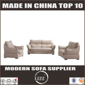 Native Modern Heated Leather Sofa Skinn Sofa Style pictures & photos