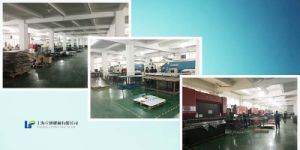 Stainless Steel Electric Enclosure/Cabinet Custom Fabrication (LFSS-0300) pictures & photos