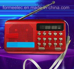 Multimedia USB Card FM Radio pictures & photos