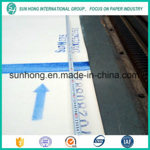 Single /Double Layer of Press Felt for Fourdrinier Machine pictures & photos