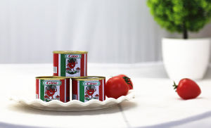 Organic Can Tomato Paste Size 70g Manufacture pictures & photos