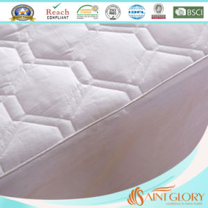 Wholesale Saint Glory Cheap Price Mattress Pad pictures & photos