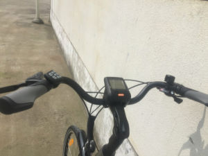 City Model, MID-Drive Motor Electric Bike (TDB15Z) pictures & photos