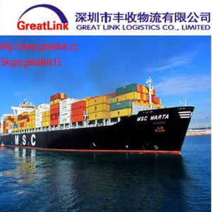FCL Ocean Shipping From Xiamen of China to Genova, Italy