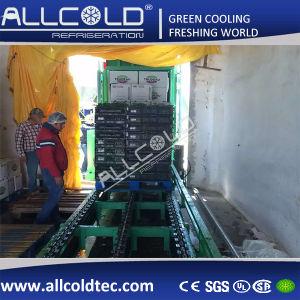 Celery Vacuum Cooling Machine pictures & photos