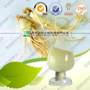 FDA Registered Ginseng Root Powder Dried Ginseng Root pictures & photos