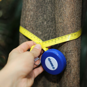 2m High Quality Hand Tools Fiberglass Diameter Pi Measuring Tape pictures & photos