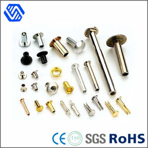Brass Steel Round Head Hollow Rivet pictures & photos