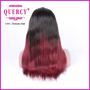 Brazilian Lace Front Wig for Women with Natural Hairline, Straight, All Colors Are Available pictures & photos