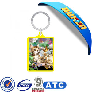 2015 Lenticular 3D Cheap Keychain with Animals pictures & photos