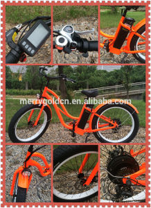 Eco-Friendly Two Wheel E-Bike 48V 500W for Ladies with Fat Tire pictures & photos