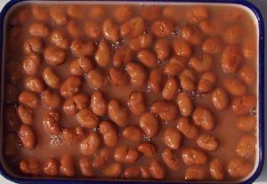 Canned Foul Medammes Broad Beans in Brine pictures & photos
