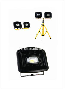 Top Quality Super Power LED Flood Light 10wx2with Tripod pictures & photos