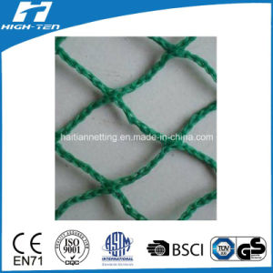 HDPE Green Colour Safety Net pictures & photos