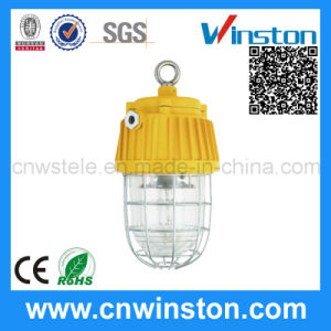 Mining Explosion Proof Tunnel Lamp with CE pictures & photos