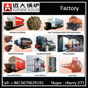 China Cost of New Biomass Wood Burning Steam Boiler  Steam Boiler