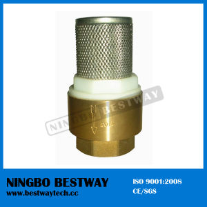 Brass Check Valve with Stainless Steel Strainer (BW-C09) pictures & photos