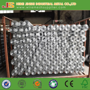 Galvanized Welded Mesh pictures & photos
