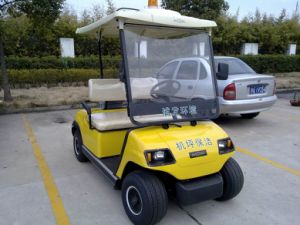 Cheap 2 Seaters Electric Buggy pictures & photos