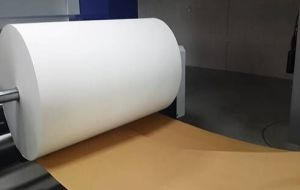 Ms-Jp Sublimation Series Printer with 66GSM Quick Dry Non-Curl Sublimation Heat Transfer Paper Manufacturer pictures & photos