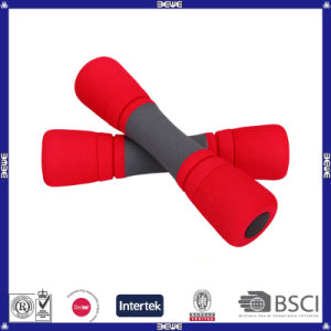 Fashion Exercise Dumbbell for Sale pictures & photos