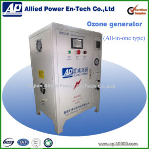 10g/H Ozone Generator for Cleaning Vegetables pictures & photos