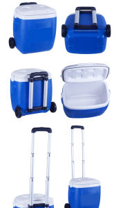 High Quality Trolley Custom Lunch Cooler Bag pictures & photos