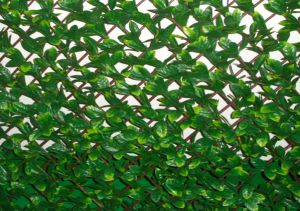 UV Protected Privacy Artificial Willow Hedges with Leaves (MW16040) pictures & photos