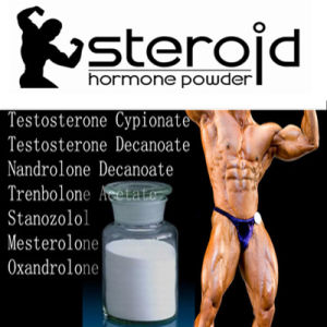 Muscle Building Testosterone Phenylpropionate Steroids Powder 1255-49-8 pictures & photos