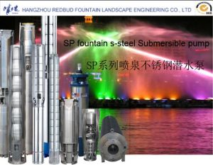 Sp Stainless Steel Pump pictures & photos