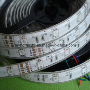 Decoration Strip High Lumen 5050SMD 60LEDs/M Christmas LED Rope Light pictures & photos