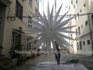 Lighting Inflatable LED Star for Event