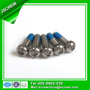 Customized Torx Head Nylok Security Screw pictures & photos
