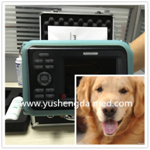 Ce Approved Animal Pregnacy Testing Machine Palmtop Ultrasound Scanner pictures & photos