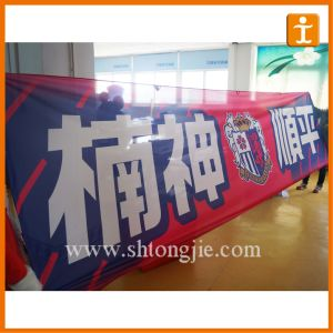 Flying Polyester Display Flag with Eyelet (TJ-13) pictures & photos