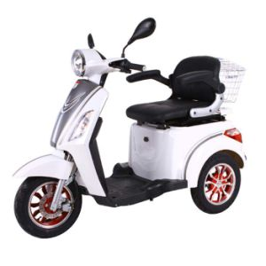 Three Wheel Motor Bicycle Adult/Children Tricycles