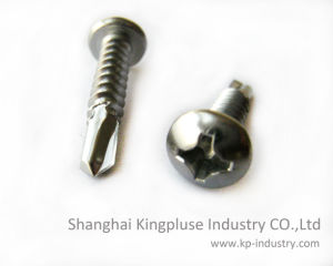 Philip Recessed Pan Head Self-Drilling Screw DIN7505n pictures & photos