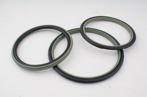 PTFE/Teflon Hydraulic Rod Seals Stepped Seals pictures & photos
