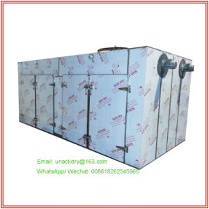 GMP Standard Pharmaceutical Tray Dryer for Pills/ Tablet/ Granule pictures & photos