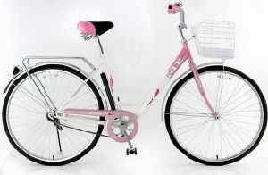Hot Sales Lady Bicycle /Lady Bike Sr-L1038 pictures & photos