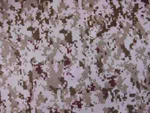 Fy-DC21 600d Oxford Digital Camouflage Printing Polyester Fabric pictures & photos