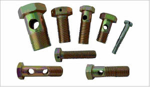 Stainless Steel Hollow Screw (ATC-457) pictures & photos
