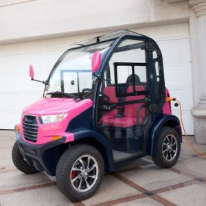 2 Passengers Mini Size Electric Transportation Vehicles pictures & photos