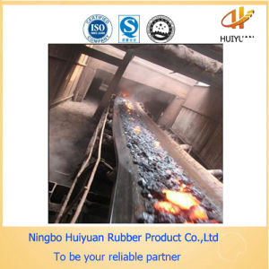 Leading High Temperature Resistant Conveyor Belt (180 degree) pictures & photos