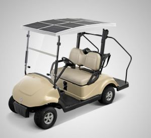 CE Certificated 2 Seat Electric Car with Solar Panel pictures & photos