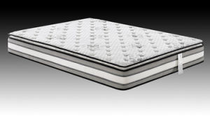 Sealy Mattress Pocket Spring Hotel Mattress pictures & photos
